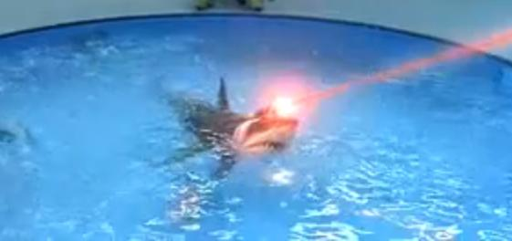 sharks_w_laser_beams