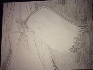 angel 03.11.15