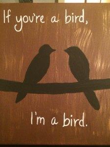 Birds 03.01.15
